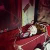 Concurso Casa decorada Halloween_1