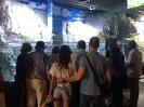acuario sevilla_2